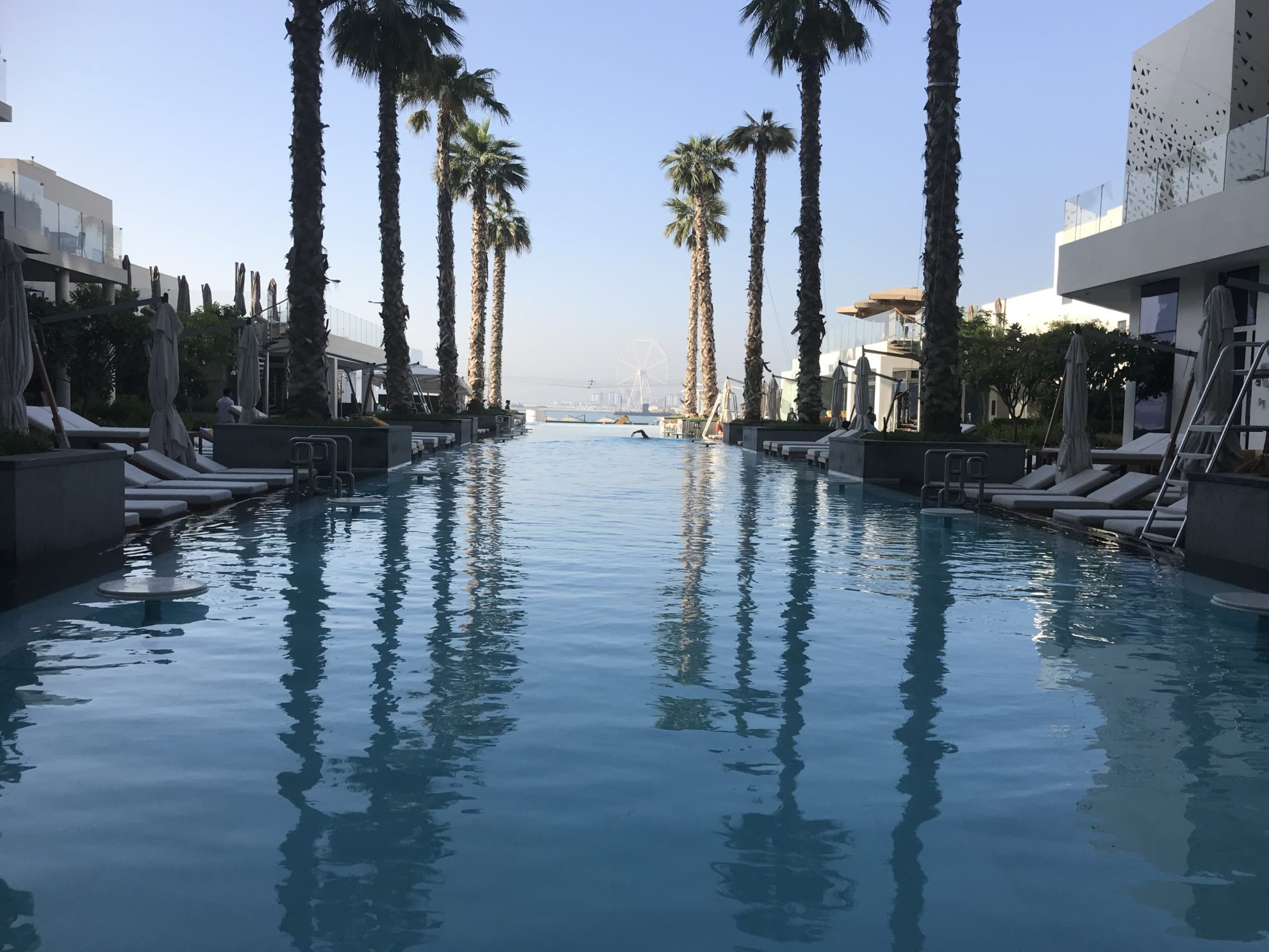 Dubai Pool Five palms